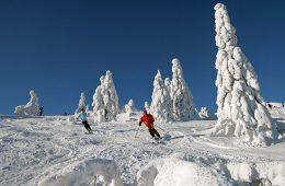 Skigebiet Großer Arber Bayerischer Wald