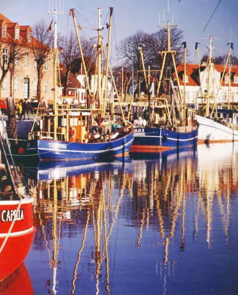 Krabbenkutter bringen die Nordsee-Spezialität täglich in die Häfen