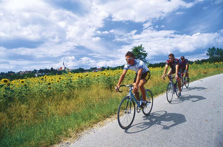Schnelle Strecken für Rennradfahrer © Foto: Tourist-Information Passauer Land