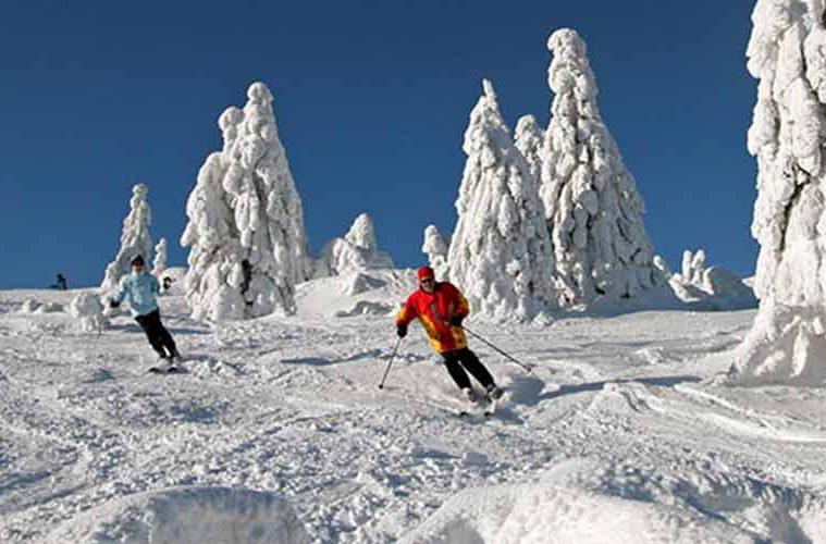 skigebiet-grosser-arber-dsr